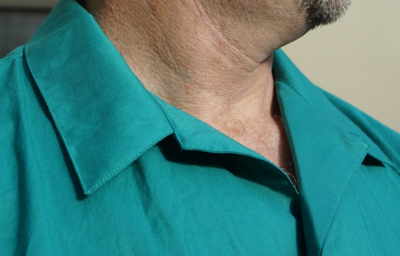 Negroni Teal - Collar Detail